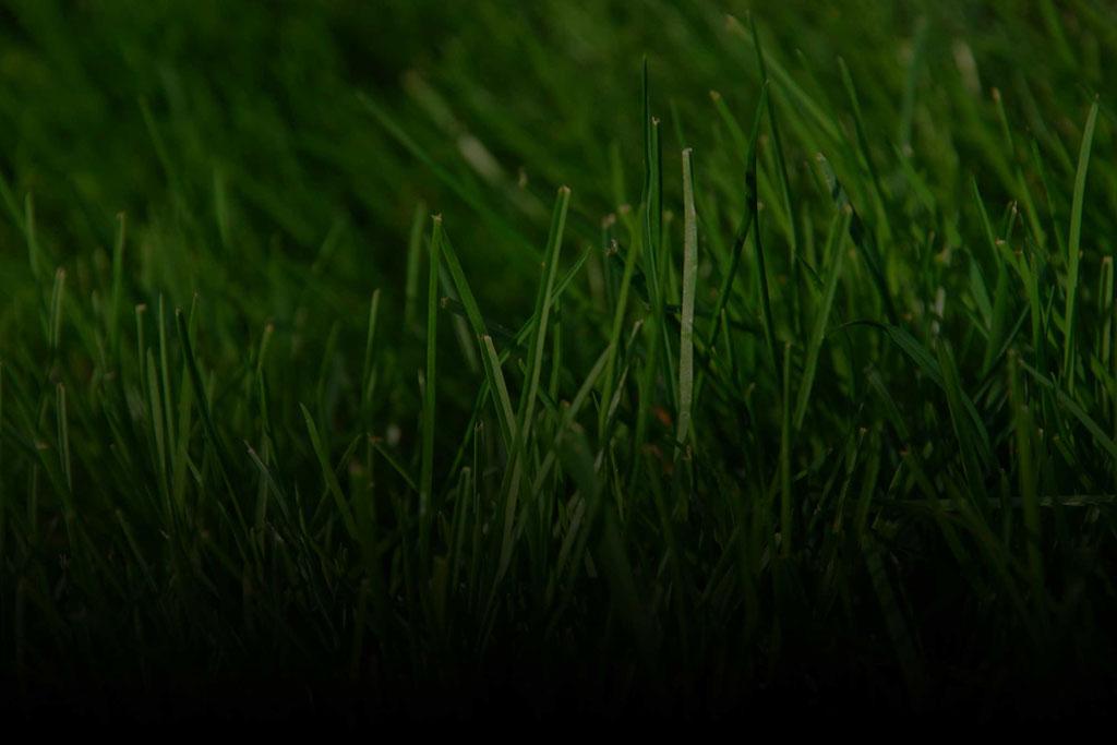Green Grass Lawn Care Nebraska : Swift green lawn care and maintenance omaha nebraska aeration